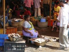 Goa, Fish Market